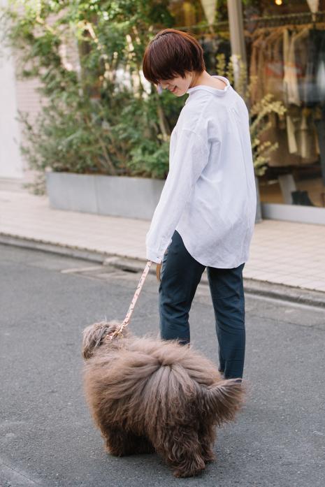 TIGGY DOG COLLAR/Lサイズ