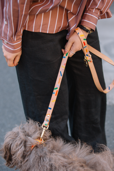 MEMPHIS CONFETTI DOG LEASH