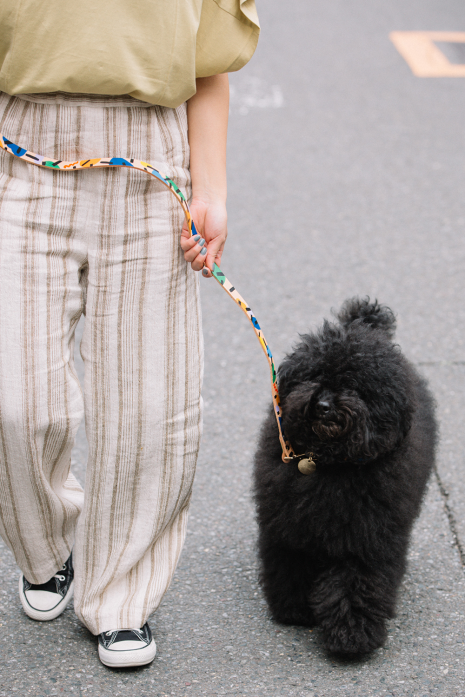 BLOCK PARTY DOG COLLAR/Sサイズ