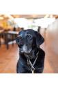 CUSTOM TAG_FOR PET /Lサイズ