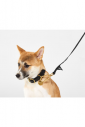 The Leather Alternative Dog Leash Standard