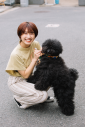 BLOCK PARTY DOG COLLAR/Mサイズ